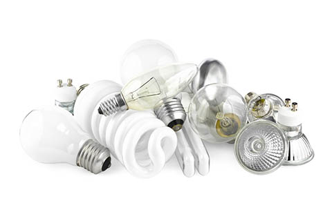 Various Lightbulbs on a White Background   Class C Components